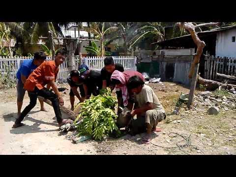 Idul Adha 2014 - Kampung Moodu- Gorontalo