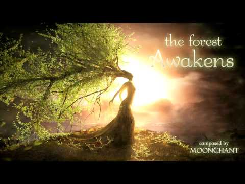 Ambient Nature Music - The Forest Awakens