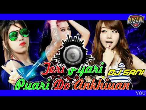 Teri Pyari Pyari Do Ankhiya  Dj Remix  With Dj Shani