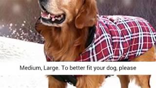 Designer Dog Clothes - Kuoser Dog Coats Small, Medium, Large