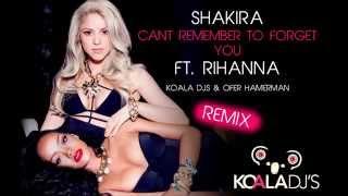 Shakira - Can't Remember to Forget You ft.Rihanna (KOALA DJ'S & Ofer Hamerman Remix)