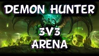 Demon Hunter - 3v3 Arena PvP #1
