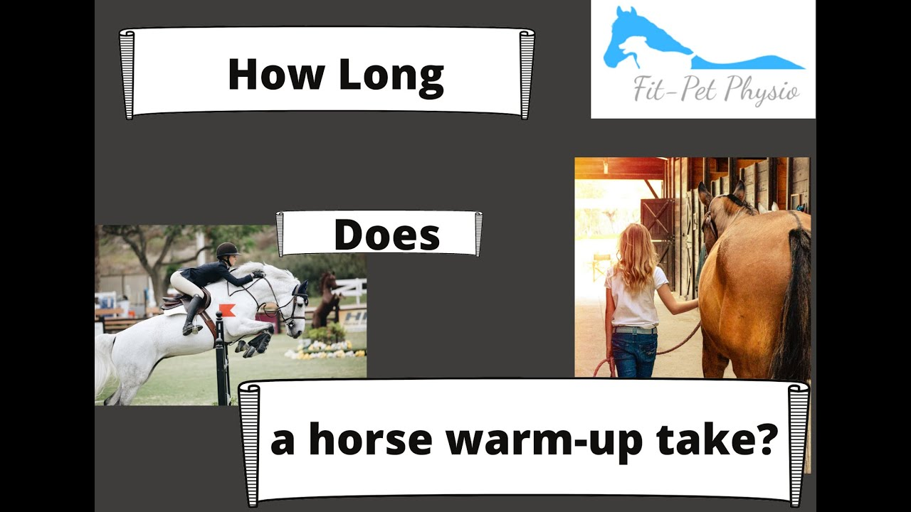 How long does a horse warm-up take?