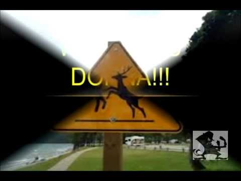 Please Move Deer Crossing Sign. Part 2.Donna The Deer Lady Mp3