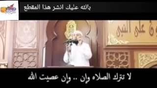 للشيخ محمود هاشم الشيطان مقطع مؤثر جدا