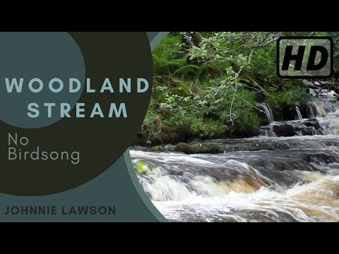 Relaxing Waterfall Nature Sounds-Natural Soothing Sound of Water-Forest River W/O Birdsong