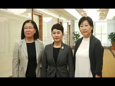 Mongolian Foreign Ministry Delegation Arrive in Pyongyang