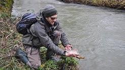 Ouverture truite 2020 en Haute Marne : suivez le guide !