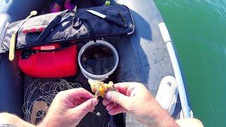 Рыбалка 2021 СОМ НА КВОК С ЮНОЙ РЫБАЧКОЙ ВЗОРВАВШЕЙ ЮТЮБ