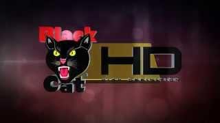Black Cat HD Trailer