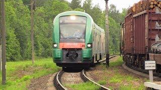 [БЧ] Дизель.поезд ДП3-002 на ст. Рыжковичи / [BCh] DP3-002 DMU at Ryzhkavichy station