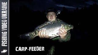 НОЧНЫЕ МОНСТРЫ НА ФИДЕР (ОЗ.КОРОЛЁК) | FishingVideoUkraine