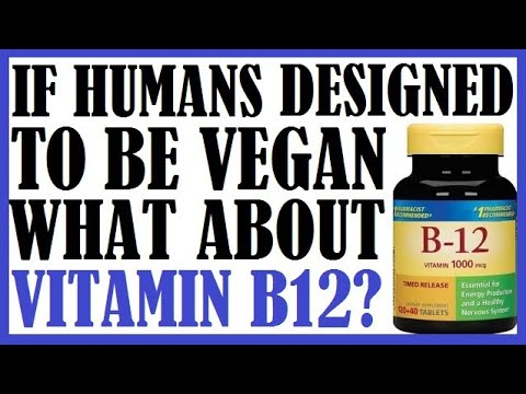 if-humans-designed-to-be-vegan-why-do-they-have-to-take-vit-b12-supplements?