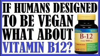 If Humans Designed To Be Vegan Why Do They Have To Take Vit B12 Supplements?