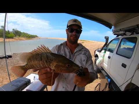 Townsville Land Based Fishing/Camping - Mangrove Jacks, Flathead, Cod
