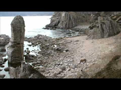 Дикая природа России 2. Primorye / Таежный край.1080p