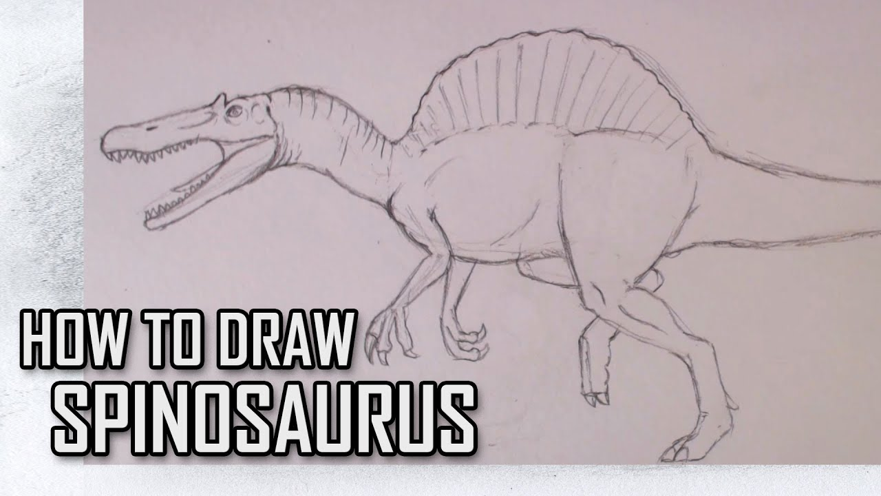 How To Draw Spinosaurs from Jurassic Park III Step By Step - YouTube