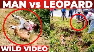 VIDEO: Injured Leopard Attacks Man | After Tries to Clicking Photo | Bengal