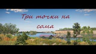 Русская рыбалка 4 РР4 RF4 Ахтуба три точки на сома