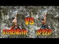 Climbing Style Comparison : Strength VS Speed | + New 8c Project !
