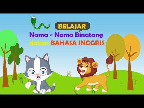Belajar Nama-Nama Binatang dalam BAHASA INGGRIS