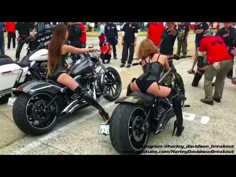 Harley-Davidson Breakout Club Japan 🇯🇵 Meeting