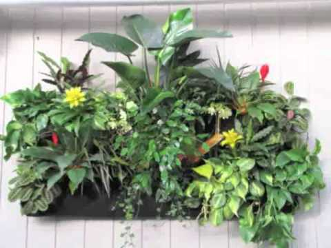 Delightful Woolly Pocket   Vertical Gardening At Longacres!   YouTube