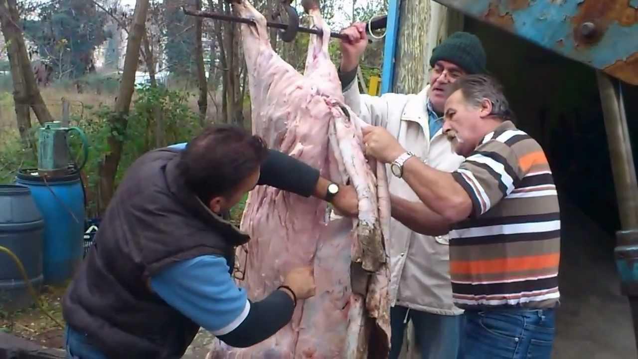 σφαξιμο γουρουνιου στην αυλη του τσακου στης 8-12-12 (3).mp4 - YouTube