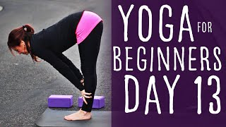 17 Minute Yoga For Beginners 30 Day Challenge Day 13 With Fightmaster Yoga