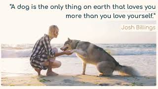 A dog is the only thing on earth that loves you...