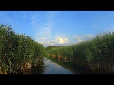 На катере по реке Воронеж