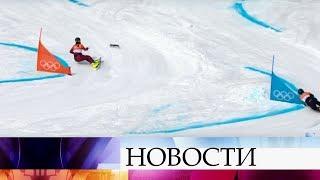 Белка выбежала на олимпийскую трассу во время заездов в параллельном гигантском слаломе.