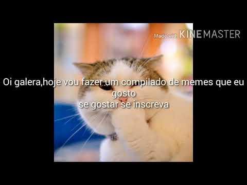 Compilado De Memes Que Eu Gosto Creditos Na Desc Youtube