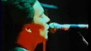 UB40 - ♪ ♫ ♪ Red Red Wine ♪ ♫ ♪ ( Live Performance - 1983 )