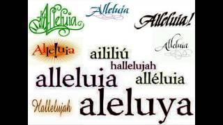 Alleluia     Ngài là Thiên Chúa quyền phép thống trị muôn loài