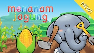 Download Video Lagu Anak Indonesia | Menanam Jagung MP3 3GP MP4