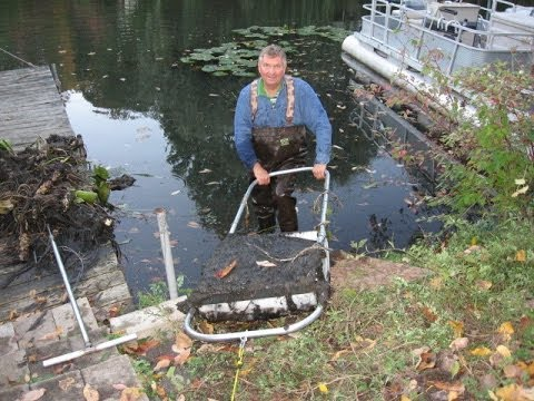 Remove Lake And Pond Muck Weeds Diy