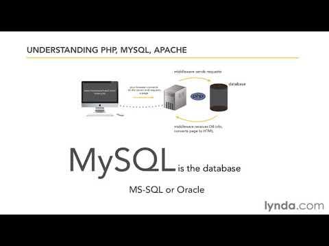Understanding content management systems (CMS) | lynda.com overview