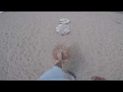 PANAMA Beach Life - Playa Venao and Pedasi 2017 - Attractions Ep.1