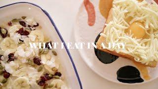 what i eat in a day 01 烤燕麦 芝士火腿吐司 简单又好吃的卤鸡爪煲 青椒肉丝 快手早餐
