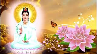 Những Bài Kinh Nên Nghe Sau Ngày Lễ Phật Đản Tháng 4 Âm ♥ Kinh Phật Màu Nhiệm