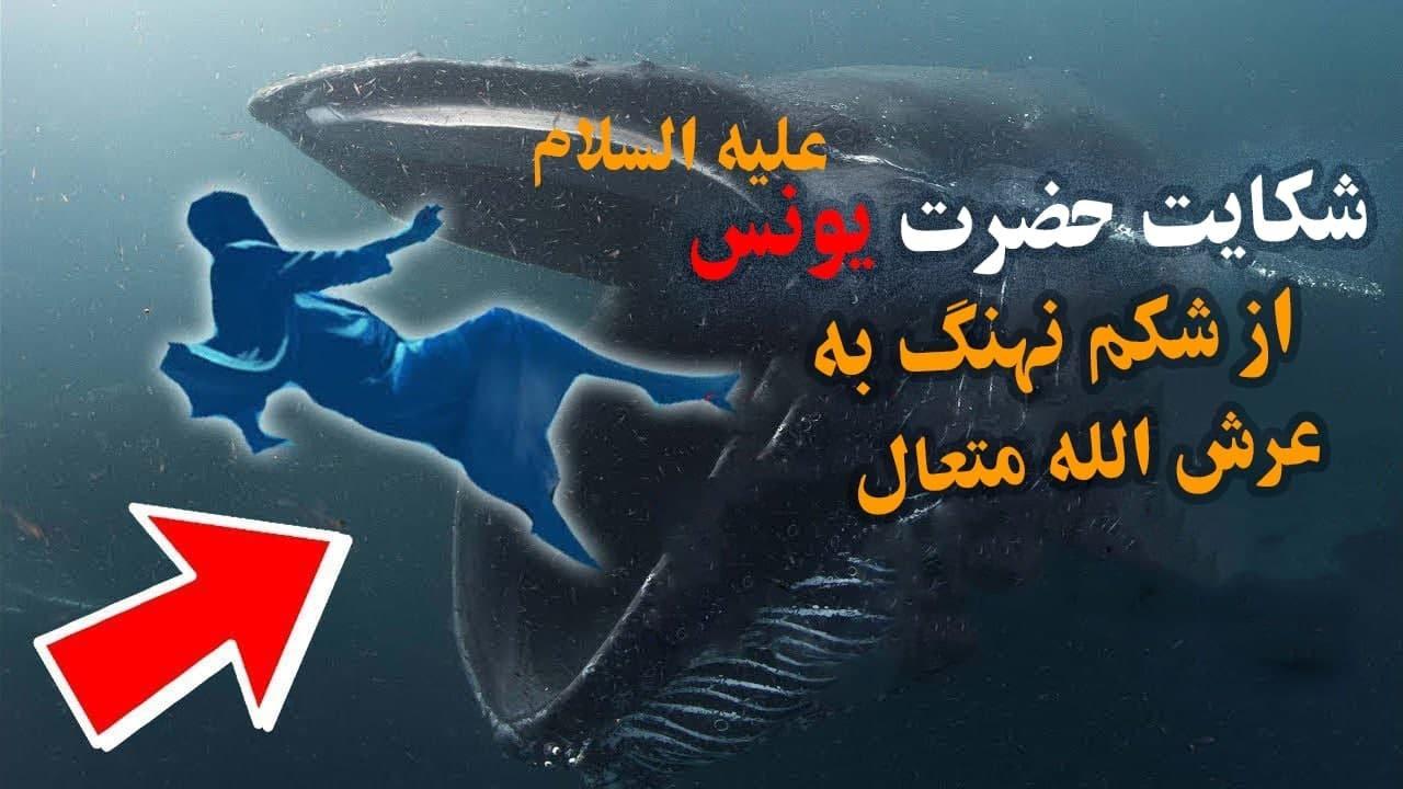 شکایت یونس علیه السلام از شکم نهنگ به الله سبحانه و تعالی