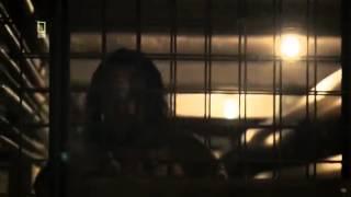 Prison Breaks: Tunnelflucht - Die wahren Geschichten Doku