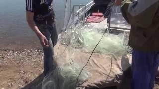 видео рыбалка сплавными сетями