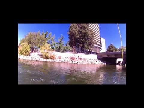Fly Fishing In Downtown Reno