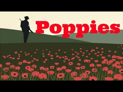 summary of poppies by jane weir Home gcse english literature poppies analysis (gcse) poppies analysis (gcse) 35 / 5 hide show resource information english literature the idea of a.