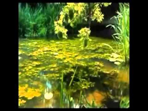 Iran land of all seasons