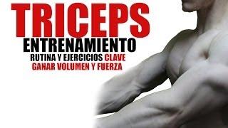 ENTRENAMIENTO DE TRICEPS | RUTINA Y EJERCICIOS CLAVE | GANAR VOLUMEN Y FUERZA