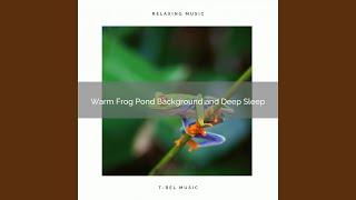 Surrounding Frog Pond Music and Hard Relax Sleep
