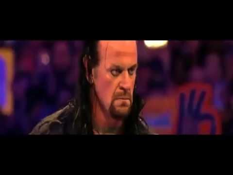Undertaker returned and attacked Roman reigns